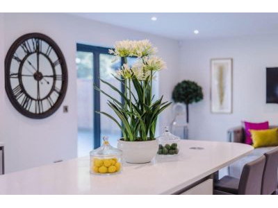 Molly Marshall Home Staging & Styling